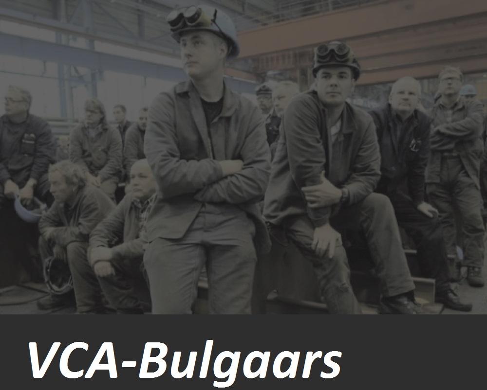 VCA Bulgaars